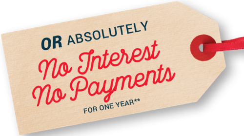 Or absolutely no interest no payments for one year**